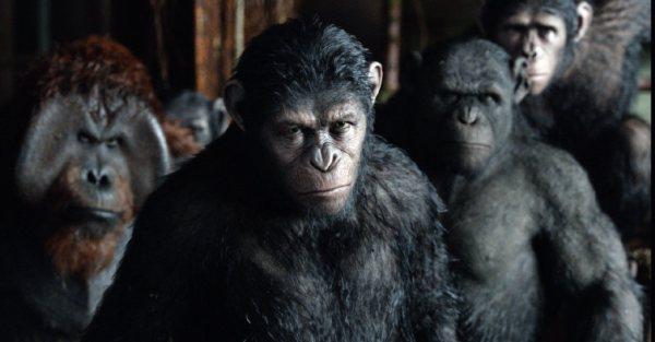 Dawn of the Planet of the Apes: Learned Behavior