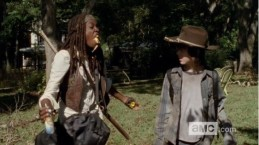 twd michonne and carl